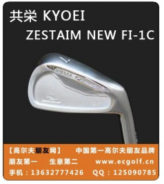 KYOEI ZESTAIM FI-1 C new  铁杆组杆头 共荣