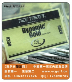 TRUE TEMPER DYNAMIC GOLD SL 铁杆 钢杆身